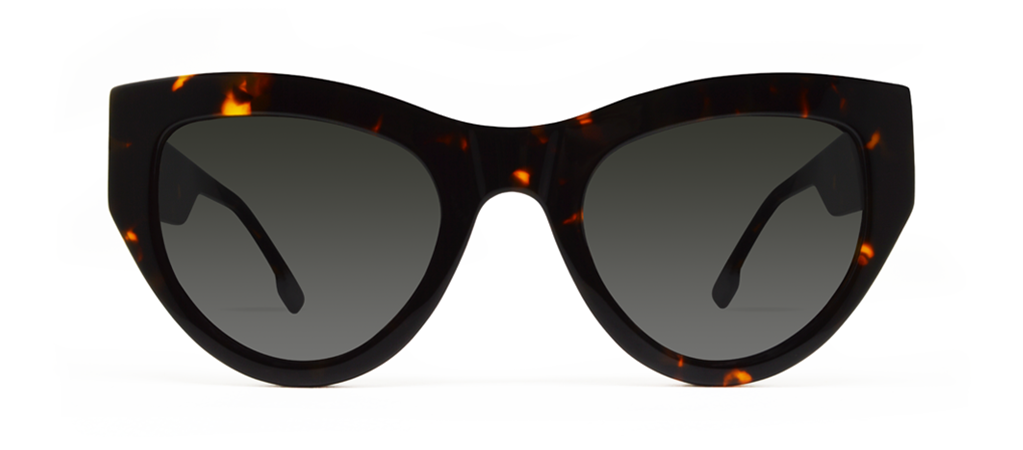 Blaze 2.0 Crystal Tortoise with Black Lenses