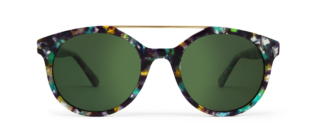 Vector Multicolor Tortoise with Green Lenses