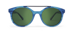 Vector Blue Tortoise with Green Lenses