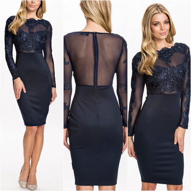 Kimmy Illusion Lace Cocktail Party Dress
