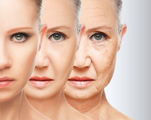 Skin aging process through the years