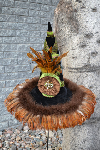 Autumn Sage – Witch Hat