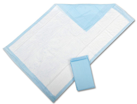 "Protection Plus Disposable Underpads - Blue - 24"" X 17"" - 300 Each / Case"