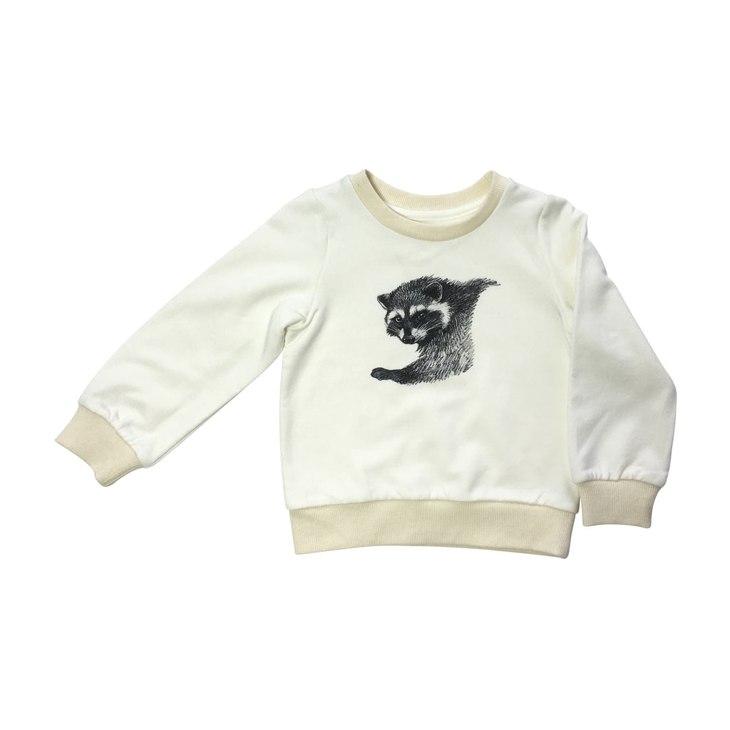 Raccoon sweatshirt (size 2-3Y)