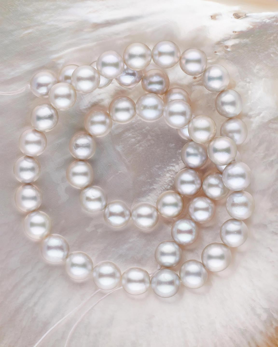 Red Sea Cultured Pearls: yes, they do exist
