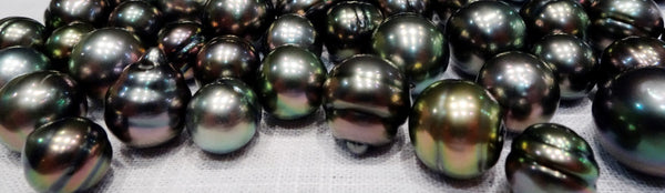 A loose lot of undrilled Tahitian pearls