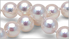 How to Grade Akoya Pearls