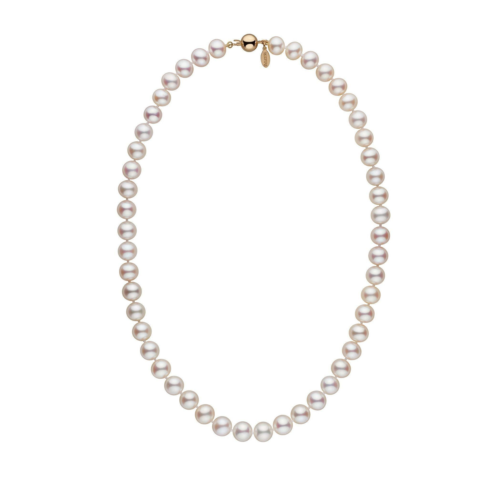 image pearl png chain single free necklace on and silver icons