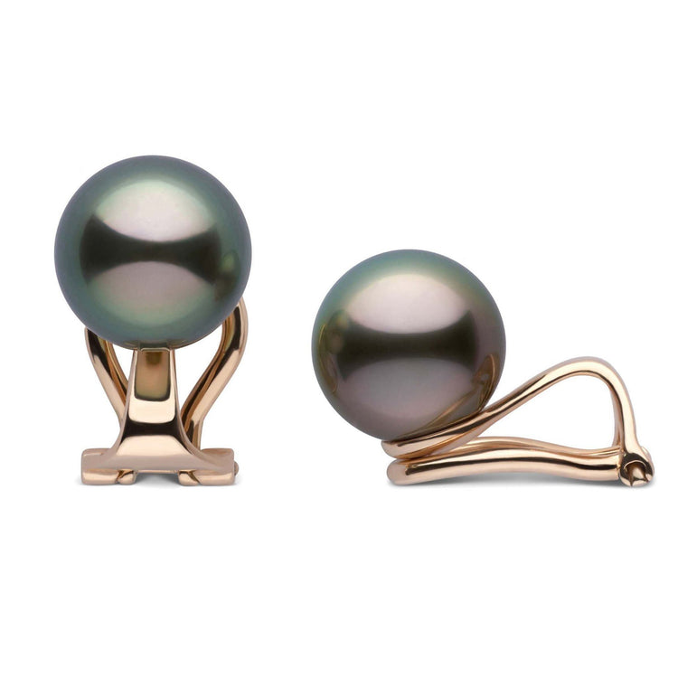 Clip Collection Tahitian 8.0-9.0 mm Pearl Stud Earrings