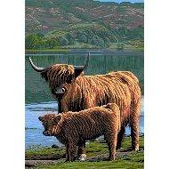 Cross Stitch Charts - Scotland