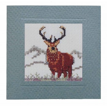 Cross Stitch Kits - Card Kit