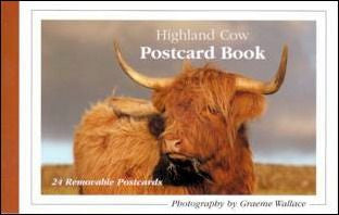 Postcard Book - Highland Cows