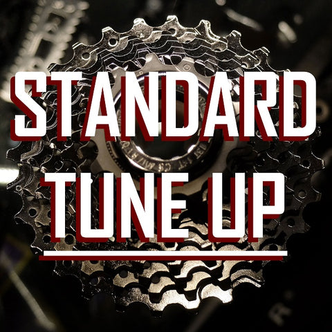 Standard Tune Up: Single Speed & Fixed