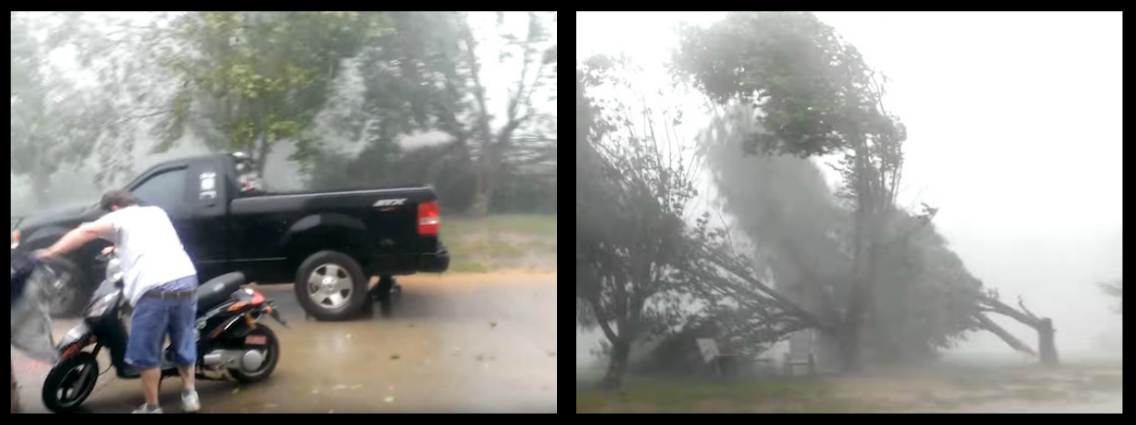 """HOLY SH*T, WE'D BETTER GET IN THE F**KEN HOUSE!"" – MEANWHILE IN TENNESSEE, MICROBURST STORM HITS LIKE A BAT OUTTA HELL, SNAPS TREES LIKE I SNAP MY FINGERS AT POSH WAITERS!"