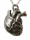 Sterling Silver Anatomical Heart Necklace by Blue Bayer Design - InkedShop - 1