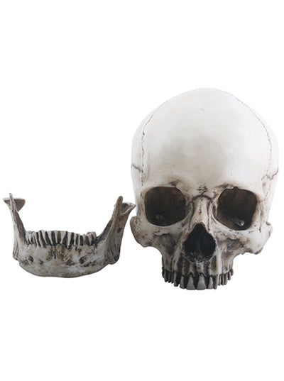 Skull Head Statue by Summit Collection - www.inkedshop.com