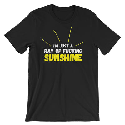 "Men's ""Ray of Fucking Sunshine"" Tee by Dirty Shirty (Black)"