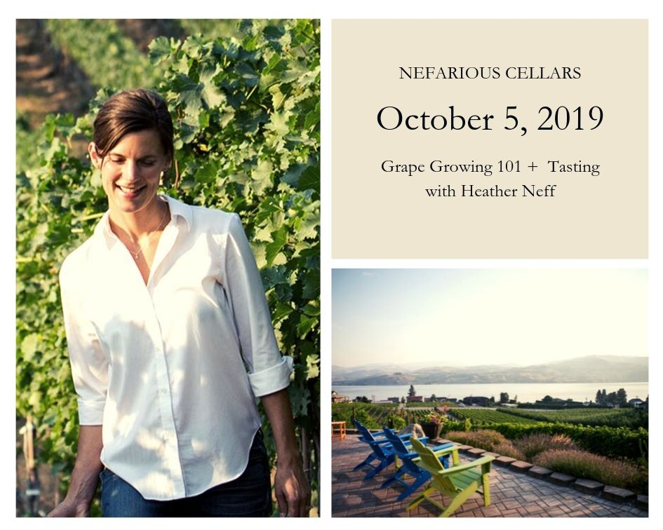 October 5 @ 11 a.m. : Grape Growing 101 + Tasting