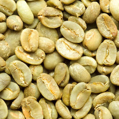 Green Coffee - Indonesia Sumatra (Organic & Fair Trade) Coffee Beans
