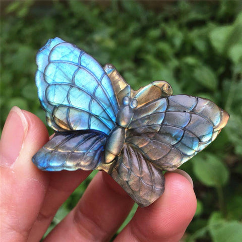 Blue Labradorite Butterfly-ToShay.org
