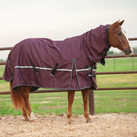 5K Cross Trainer Turnout Blanket with Hood - Eggplant