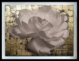Contemporary Floral Still life - Flower Series - Gold Leaves Collage 1