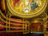 Architectural Interiors -  Grand Opera House, Europe - Framed - Installation ready
