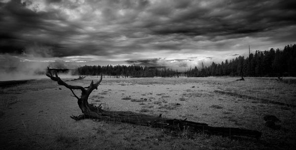 "Photography of American landscape series ""Yellowstone"" n.3"