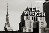 Black and White Series New York City Photography - grainy skyline of Manhattan