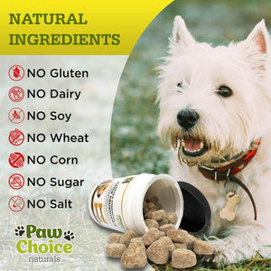 Probiotics for Dogs with Prebiotics and Digestive Enzymes | 120 Soft Chews