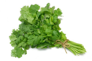 Cilantro (Chinese parsley,  Oz) - Farmgate E-Market