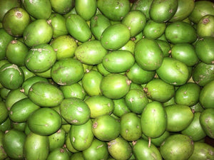 June Plum (green) - Farmgate E-Market