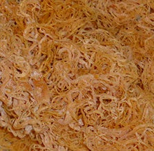 Irish Moss (seamoss)