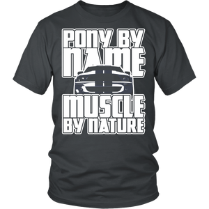 Pony By Name Muscle By Nature