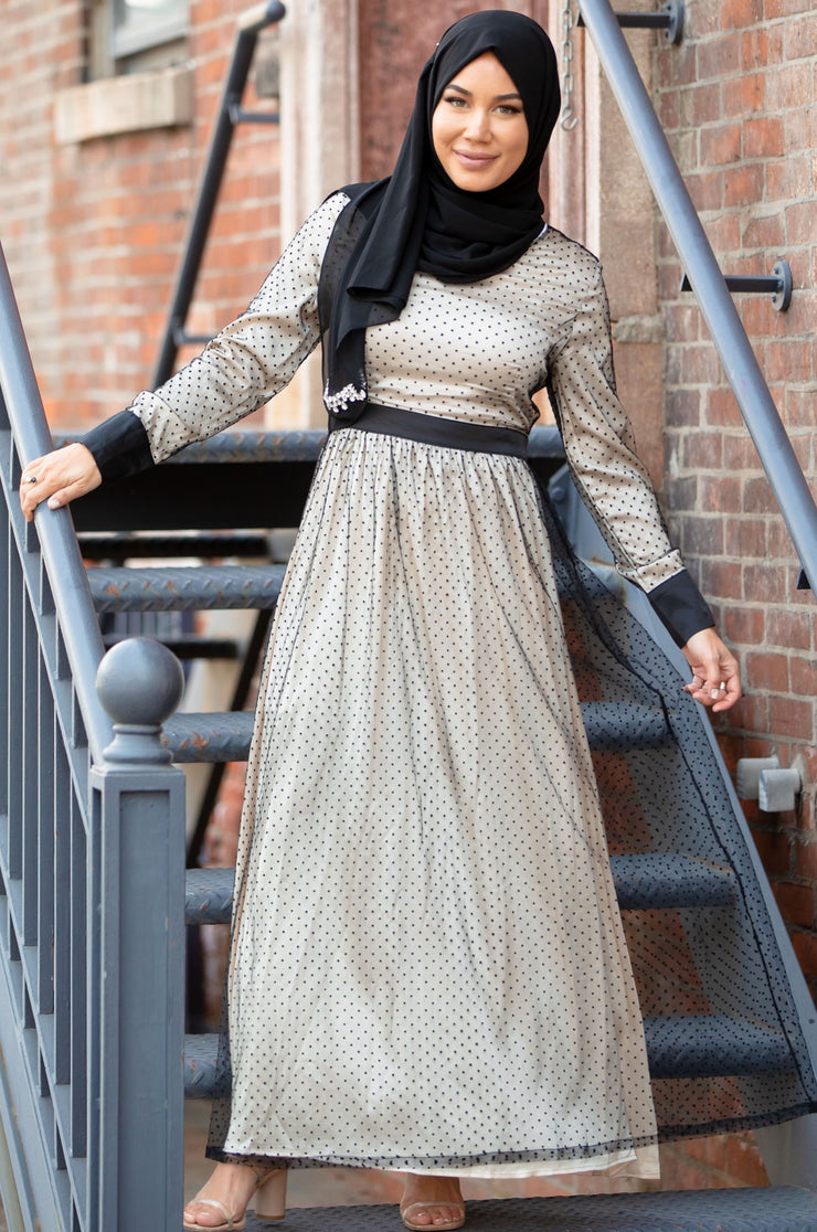 Noir Mesh Polka Dot Long Sleeve Maxi Dress
