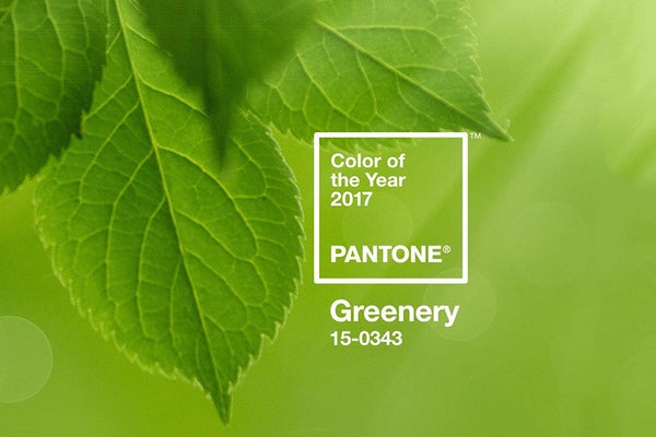 2017 Pantone of the Year: Greenery