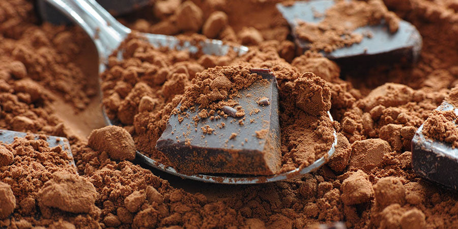 Raw Cacao Powder and Chocolate