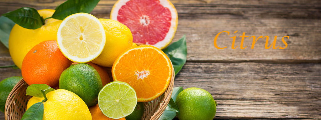 Citrus Skincare and Hair Care Beauty Products