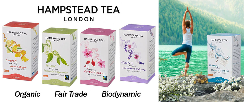 Hampstead Tea - Organic & Fair Trade Tea