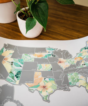 Scratch Your Travels Peachy Botanicals USA Map (Silver)