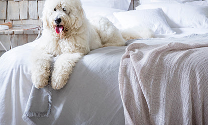 Pale Grey and Pink Linen Throws with Dog on Bed