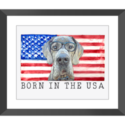 Born in the USA Flag with Big Mav Framed Prints by Suzanne Anderson