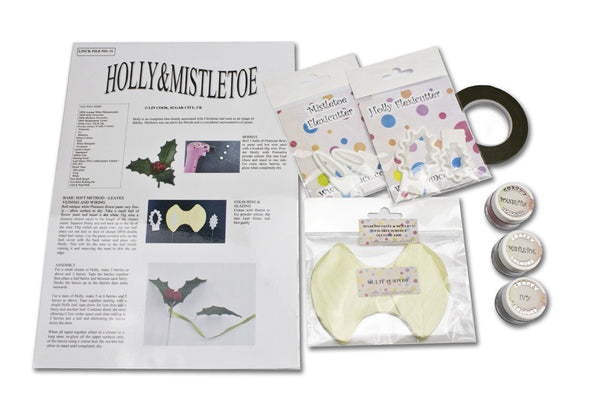 Holly and Mistletoe Kit