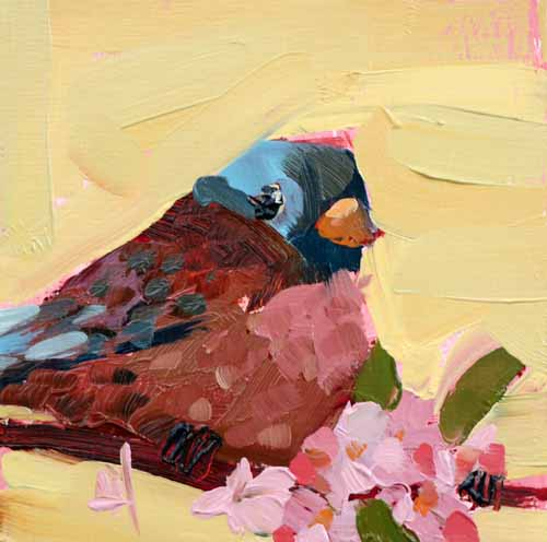 Gray Crowned Rosy Finch painting Angela Moulton - Christenberry Collection