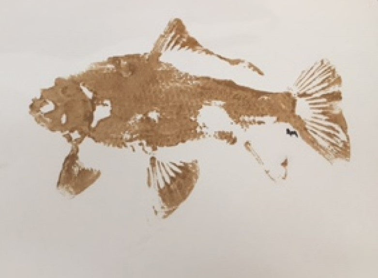 Fish 1 | Christenberry Collection