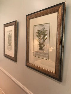 Botanicals painting Meredith Christenberry - Christenberry Collection