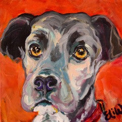 Dog | Christenberry Collection