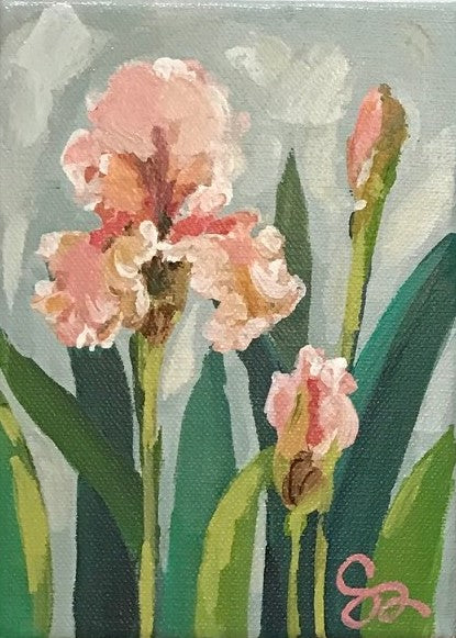 Irises I | Christenberry Collection