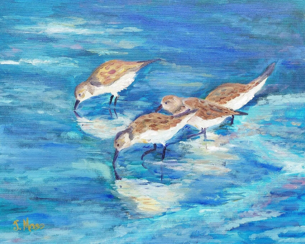 Carolina Sandpipers painting Jenny Moss - Christenberry Collection