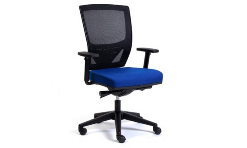 Jasonl Ergonomic Mesh Office Chair - Fantail